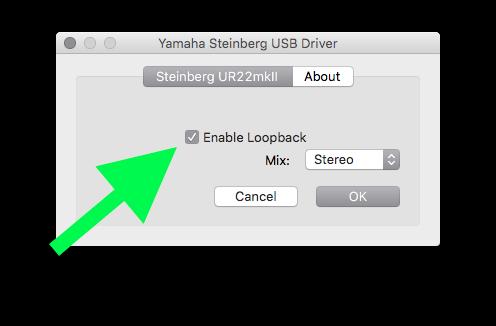 enable loopback2